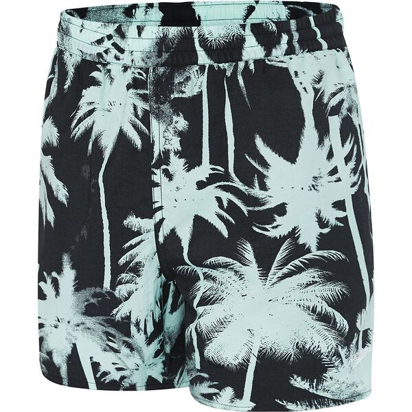 Boys Tropic Flash Watershort
